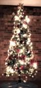 xmas tree 2018